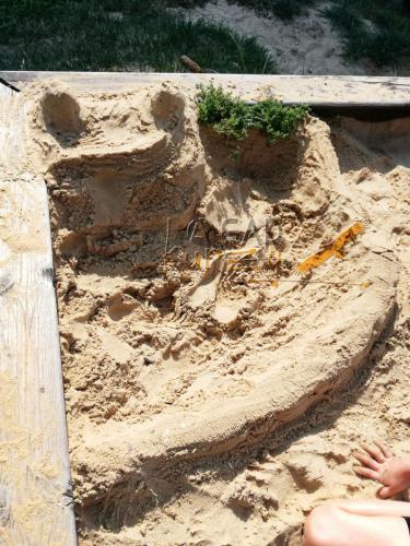 Hrady z piesku